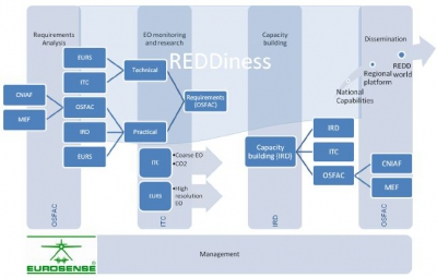 Support EO-driven forest and carbon monitoring in Central Africa for REDD – REDDiness
